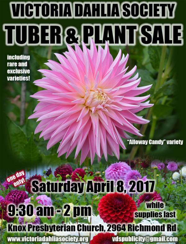 2017 tuber sale poster web