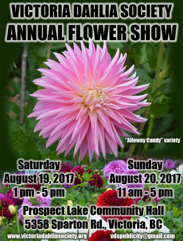 2017 show poster 1 web
